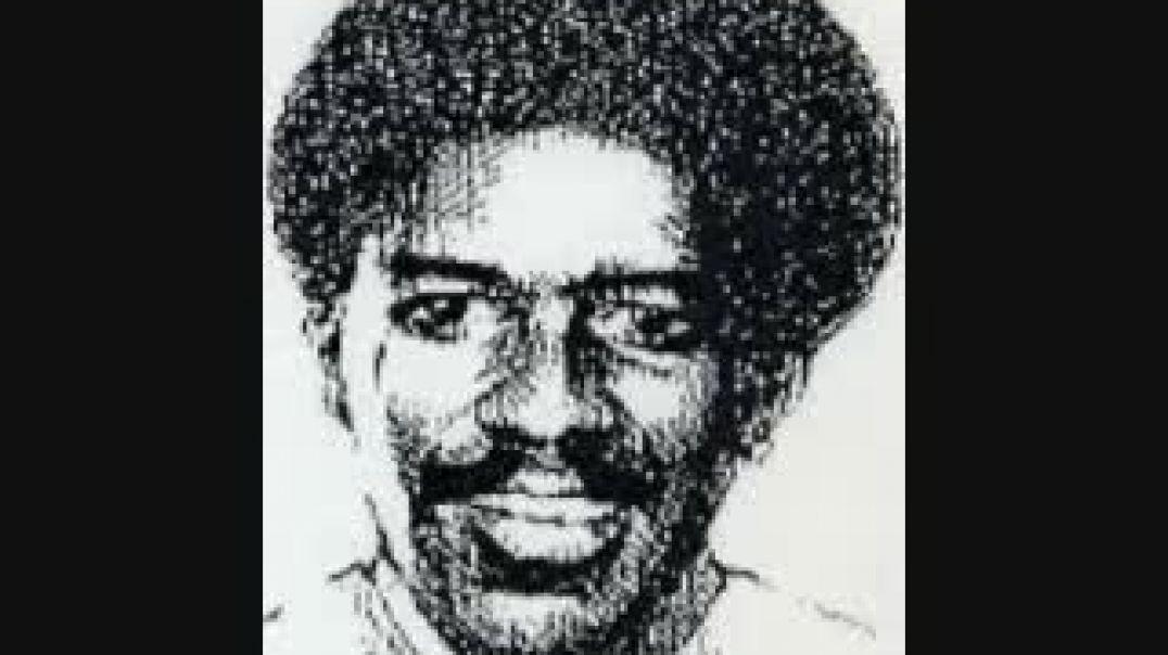 Dr. Bobby Wright Black Mentacide White Psychopathology