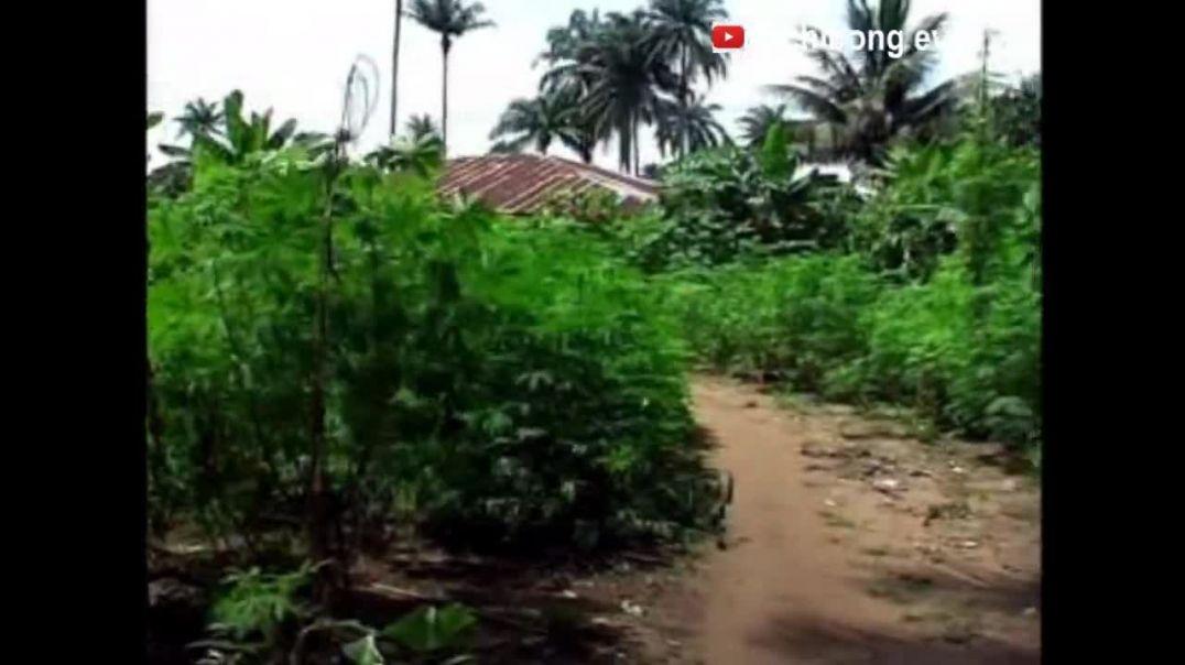 Ekpo Ikpe Annang - Se anam fiok utut - Annang dance - Akwa Ibom State