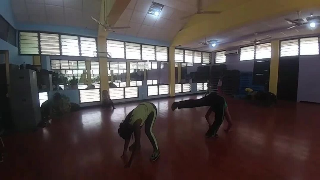 Training with Abibifahodie Capoeira Feb 15, 2020.mp4