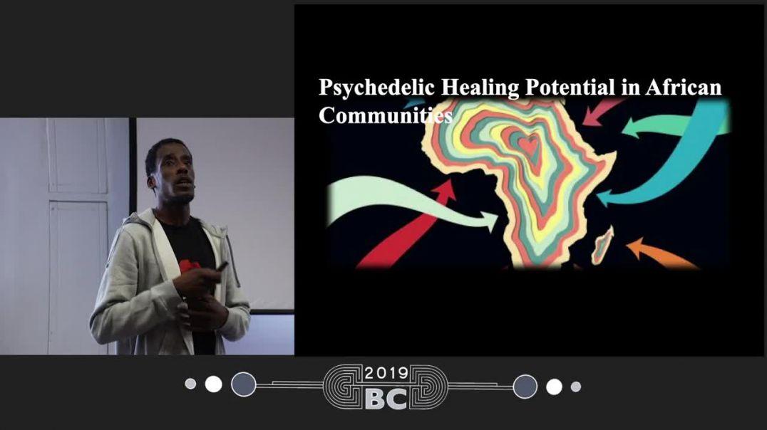 Darren Springer - Psychedelic healing potential in African Communities