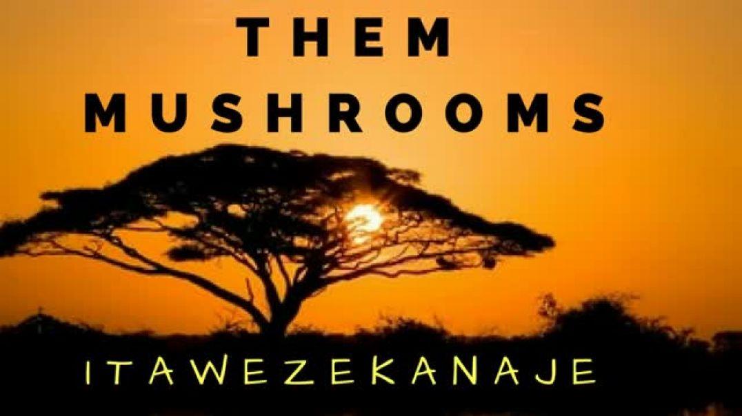 Itawezekanaje - Them Mushrooms
